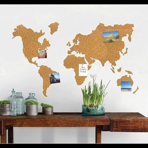 Wall Pops!  Peel and Stick Cork Map